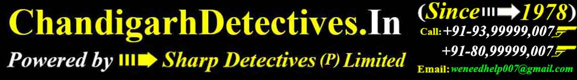 chandigarh detectives logo